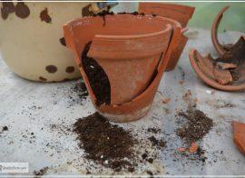 How to Repair Broken Garden Pots